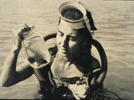 Eugenie Clark photo Mote Marine Laboratory
