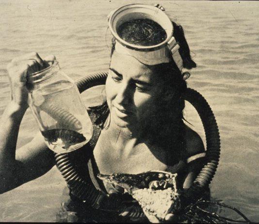 Eugenie Clark photo Mote Marine Laboratory