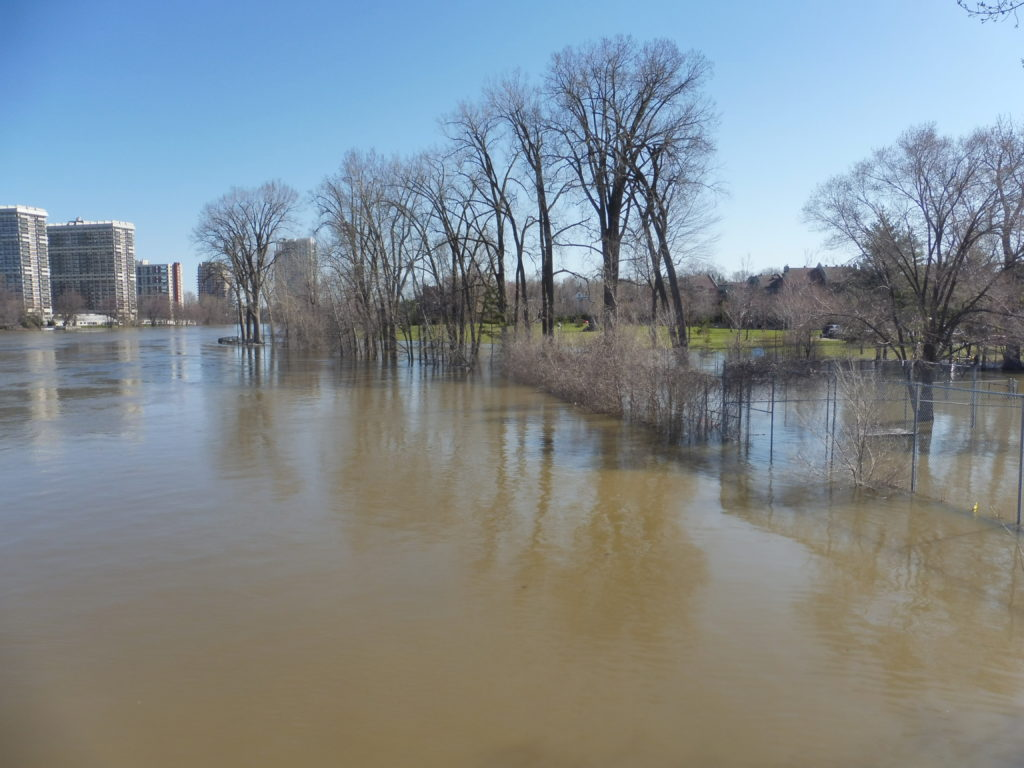 Inondations 2019 Parc Belmont Cartierville, Montréal, Qc. Photo par Pierre cb via Wikimedia Commons sous license CC BY-SA 3.0.